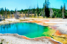 Ein Foto mit dem Titel: Yellowstone NP, Abyss Pool ©Yellowstone Park Foundation