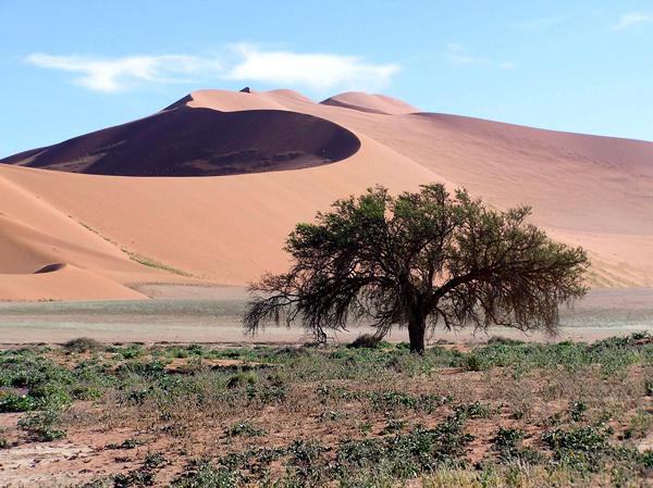Afrika Reisen - MESO Reisen